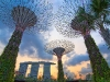I supertree di Gardens by the Bay