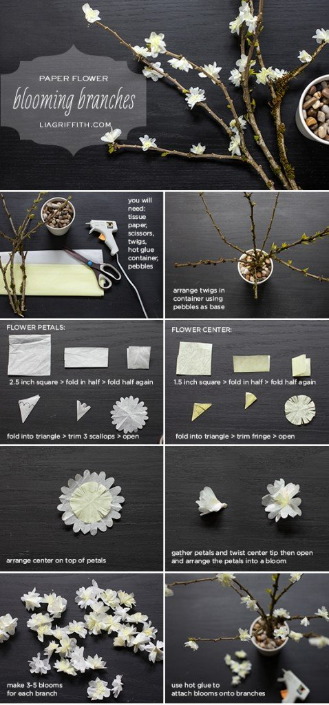 BloomingBranchTutorial