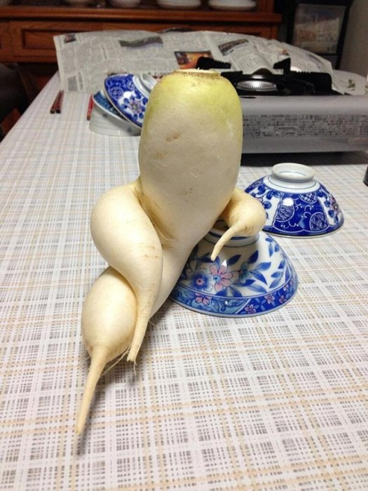 4437605-R3L8T8D-650-funny-shaped-vegetables-fruits-1