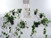 flora, il lampadario verde