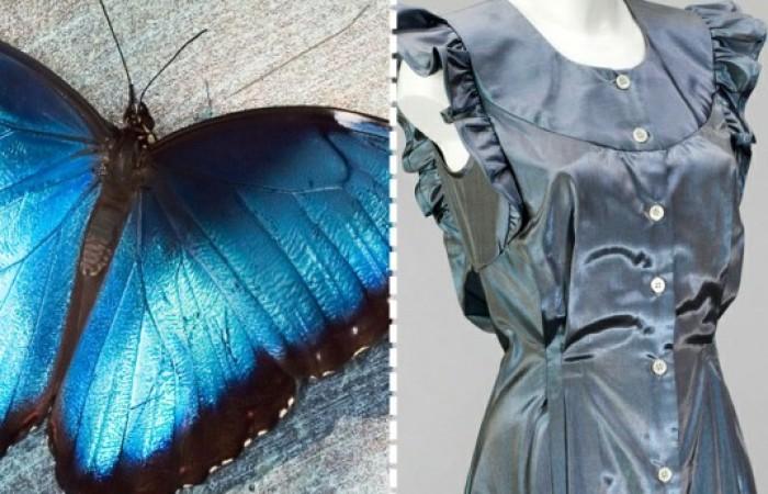 la tunica Morphotex, senza coloranti con la sovrapposizione di fibre