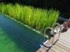 58_biopiscine_o_piscine_naturali_che_cosa_sono