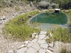 bioalago_piscina_naturale_g6