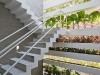 La casa a strati vegetali, le fantastiche scale