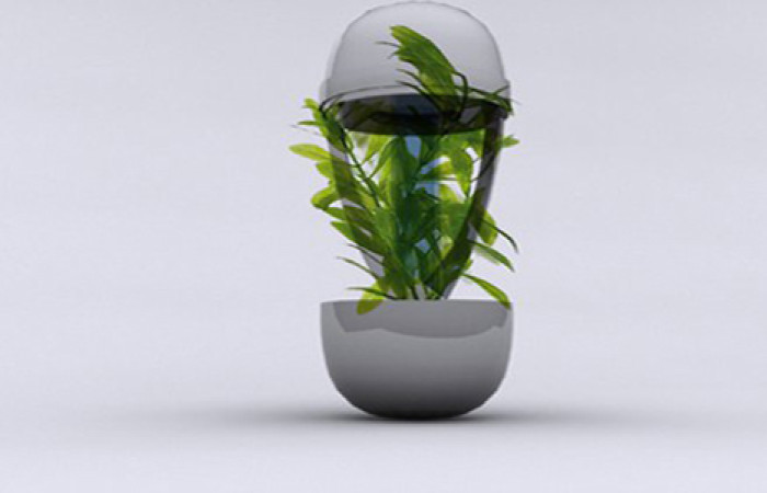 recycling-planter-ashtray