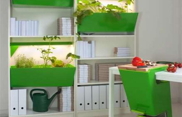 Parasite Farm: il set completo per il compostaggio domestico