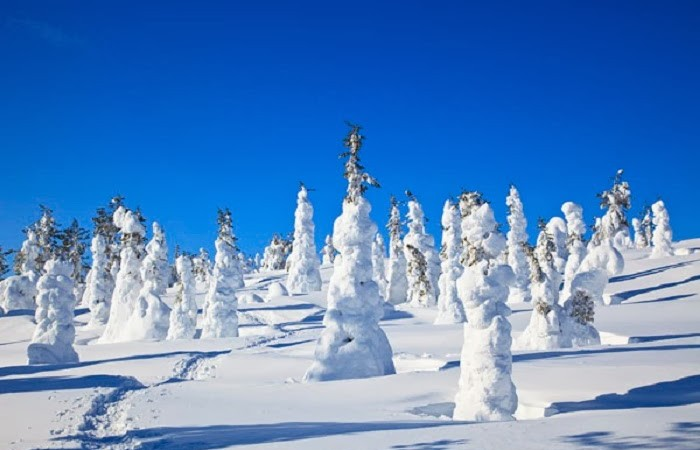 lapland-is-the-kind-of-place-where-you-could-really-be-at-one-with-nature-as-long-as-you-packed-enough-warm-clothes-4