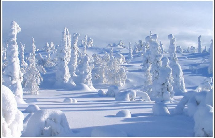 lapland-is-the-kind-of-place-where-you-could-really-be-at-one-with-nature-as-long-as-you-packed-enough-warm-clothes