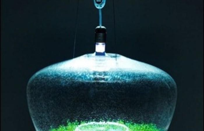 glasshouselamp2