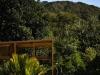 immersa nella fitta vegetazione naturale dell'isola di Great Barrier