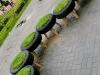 una simpatica aiuola verde di copertoni vista a Lima, in Perù