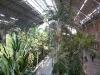 Il giardino botanico della stazione di Atocha