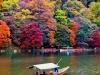 foliage di mille colori