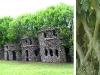 Case di alberi