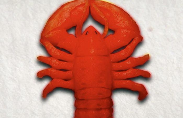watermelon_lobster