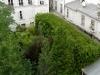 Lost in Paris è veramente 'persa' nel cortile di questa casa