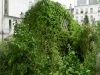 L'esterno della casa 'Lost in Paris' è una macchia verde