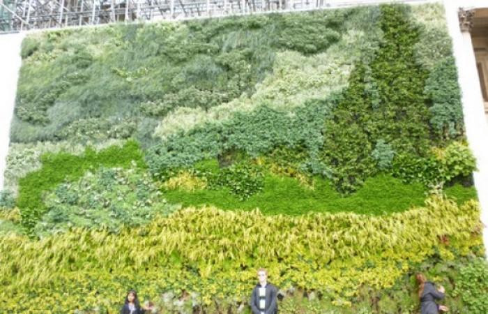 muro-verde-a-trafalgar-square-2