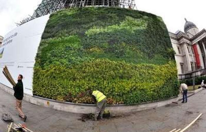 muro-verde-a-trafalgar-square-3