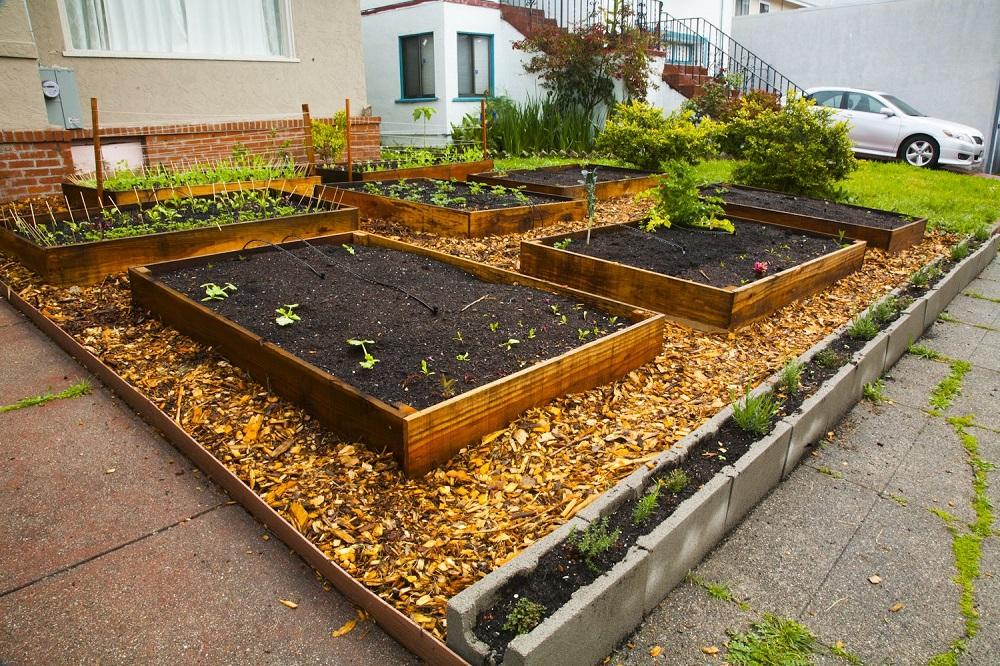 Orto giardino for Astillas de madera para jardin