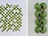 Geometrie di frutta e verdura