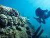 vista delle sculture subacquee