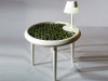 tavolino biofotovoltaico