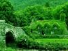 Non solo tetto verde