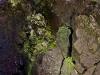 rocce nel vulcano thrihnukagigur
