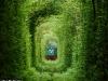 spunta il treno nel tunnel verde di klevan