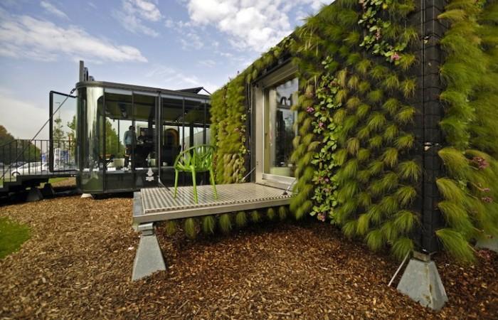 Un bel primo piano della parete verde della residenza