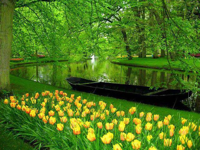 Photo of I giardini di Keukenhof a Lisse in Olanda