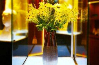Insoliti vasi per fiori