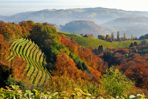 Photo of Termenland Stiriana: tra terme e hotel eco-sostenibili una vacanza all'insegna della natura e del benessere