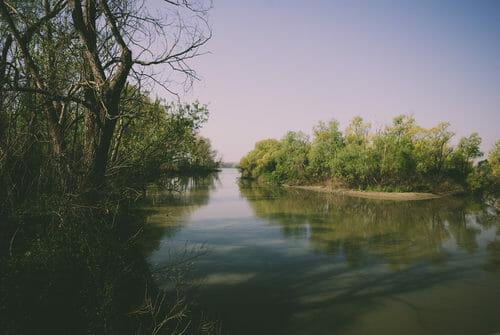 Il Parco del Delta del Po