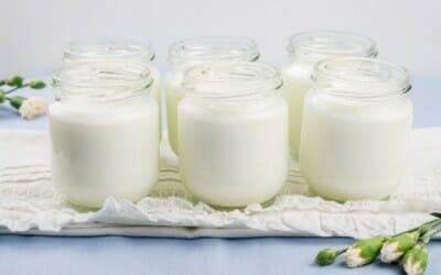 Benefici del cibo fermentato: quali sono?