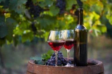 Sai quali sono le differenze fra vino biologico, naturale e vino biodinamico