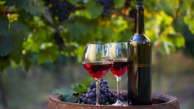 Photo of Sai quali sono le differenze fra vino biologico, naturale e vino biodinamico
