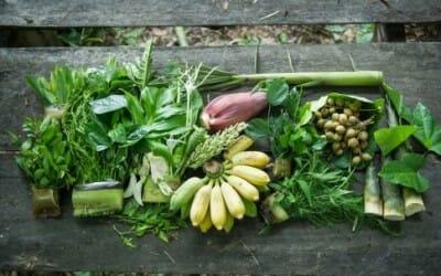 A Milano nasce un progetto per coltivare in città verdure esotiche