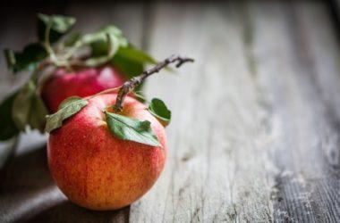 12 ricette con le mele, per gustare al meglio questo frutto di stagione