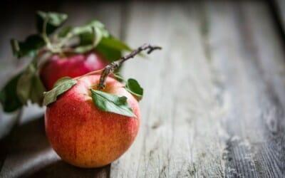 Ricette con le mele: dolci e salate per gustare questo frutto autunnale