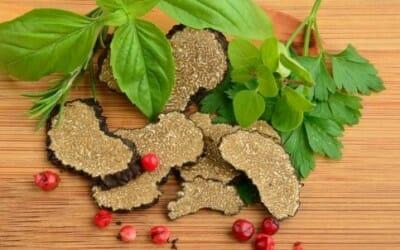 Tutto sul tartufo: le proprietà nutrizionali e gli utilizzi di questo ingrediente