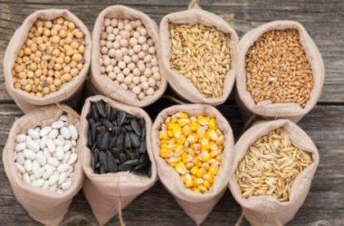 I cereali fanno bene: ecco tante ricette per scoprirli