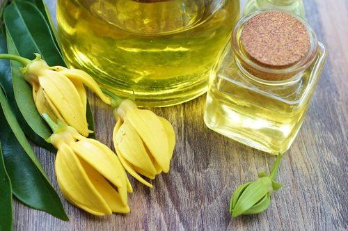 olio di ylang ylang Abbronzante naturale