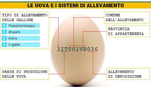 Photo of Uova biologiche: benefici e come riconoscerle