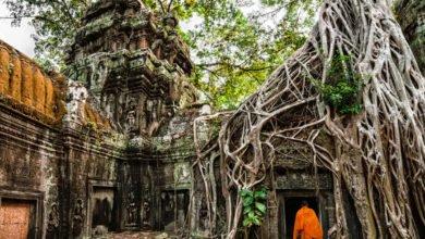 Photo of I luoghi più incredibili in cui la Natura ha preso il sopravvento