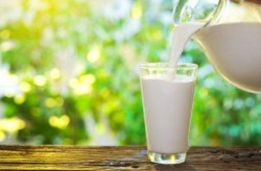 I latticini fanno bene o male? Uno studio di Harvard dice…