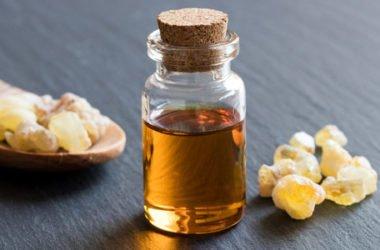 Boswellia: le proprietà curative dell'albero dell'incenso