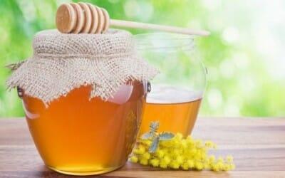 Miele di acacia: proprietà e benefici
