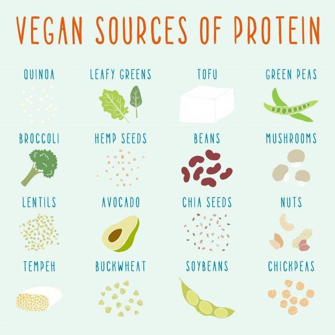 Photo of Ricette vegane: le migliori, facili, veloci e light